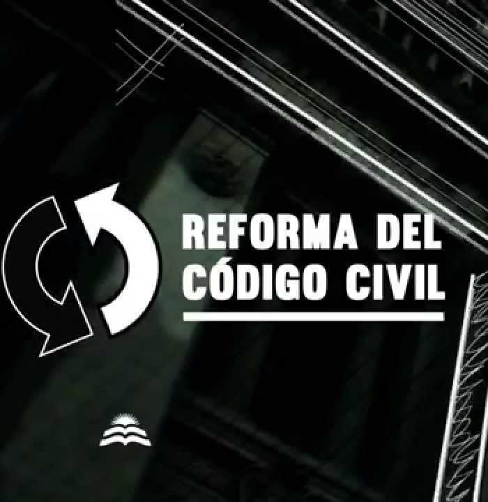DEBATE SOBRE EL PROYECTO DE REFORMA DEL CÓDIGO CIVIL ARGENTINO