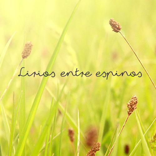 LIRIOS ENTRE ESPINOS
