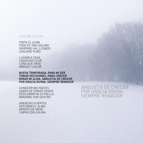 Invierno 8